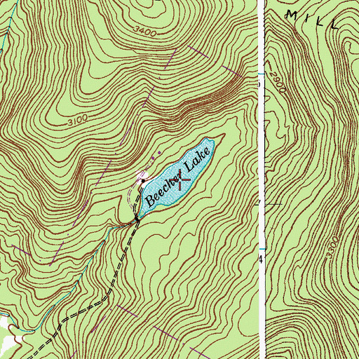 Topographic Map of Beecher Lake, NY