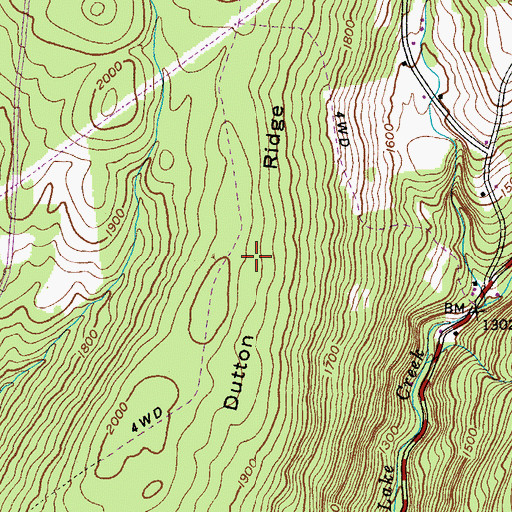 Topographic Map of Dutton Ridge, NY