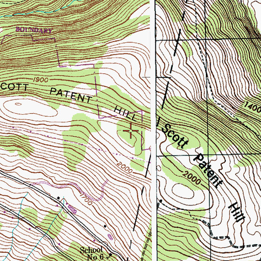 Topographic Map of Scott Patent Hill, NY