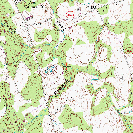 Topographic Map of Lick Branch, NC