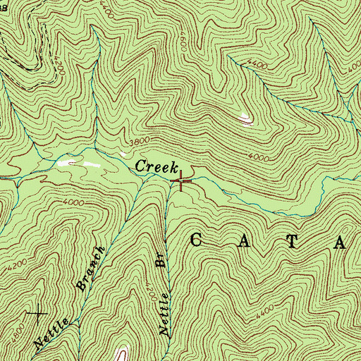 Topographic Map of Little Nettle Branch, NC
